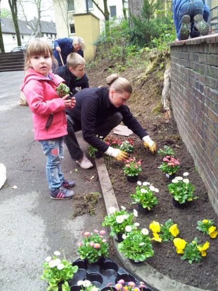 Im Schulvorgarten werden Blumen gepflanzt